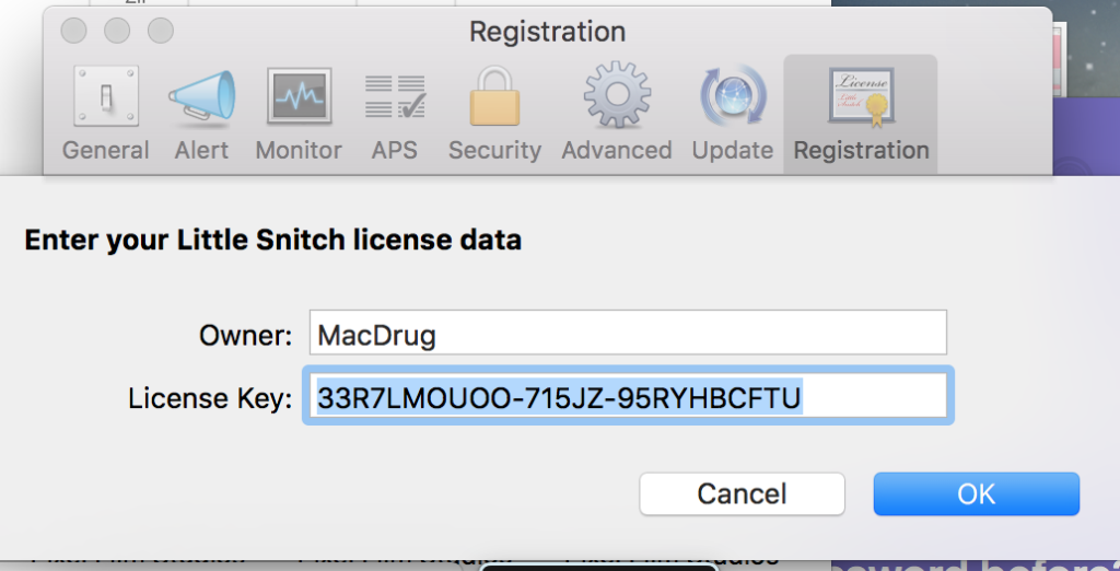 Little Snitch 4.5.2 Crack + License Key (Latest) Free Download 2020